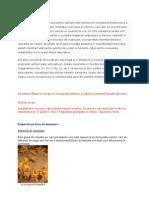 Extractul de sunatoare propus pentru utilizare este obtinut prin extractia hidroalocoolica a pârtii aeriene a plantei uscata.docx