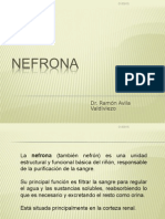 9= Nefrona.ppt