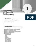 K1 the Study of Jurvenile Delinquency