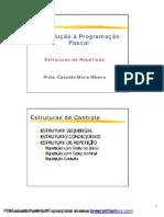 CCN 3 EstruturasRepeticao