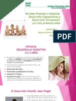Periodo Prenatal, Desarrollo Cognoscitivo (1)