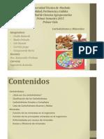 Carbohidratos y Minerales