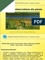 Peptide Antimicrobiene Din Plante