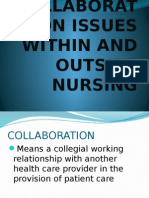 Collaboration Issues Within and Outside Nursing