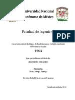 Tesis Ivan Ortega Peraya 10.0
