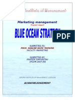 Blue Ocean Strategy Project Report