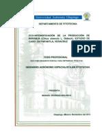 Eco-intensificacion_de_la_produccion_de_naranja.pdf