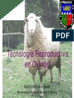 E. Mellisho-Importancia del curso.pdf