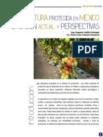la horticultura protegida en mexico