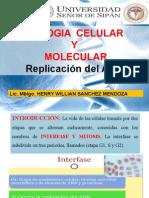 biologiacelularymolecular12semana-140626191128-phpapp01.pptx