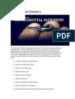 Experimental Hatchery