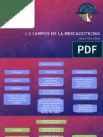 1.3 Campos de La Mercadotecnia