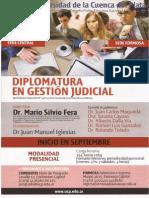 Programa Diplomatura en Gestión Judicial