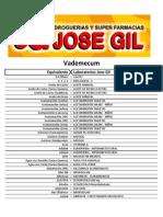 Vademecum Jose Gil Resumen