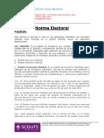 Capítulo Padron Electoral