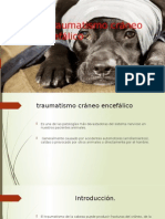 traumatismo_craneoencefalico