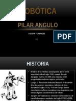 Pilar Angulo