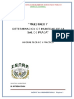 Informe de Muestreo de Sal de Praga
