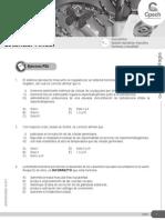 CB31-10 Aparato Reproductor Masculino Hormonas Sexualidad 2015