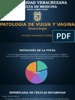 Patología de Vagina y Vulva