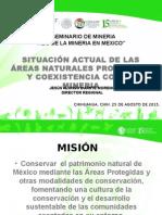Situación Actual areas naturales protegidas