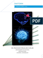 Manual Neuroanatomia 1.1