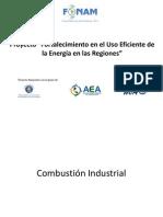 3. Eficiencia Energetica Termica Combustion