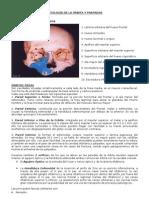 PATOLOGÍA DE LA ÓRBITA Y PARPADOS