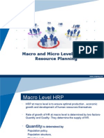 Macro and Micro level HRP
