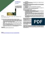 Pengertian objek kajian sosiologi.doc