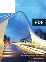 Dublin Chamber Annual Report 2009