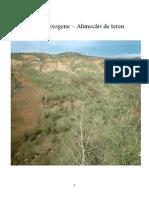 Hazarde exogene Alunecari de teren.doc