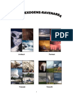 Hazarde exogene Ravenarea.doc