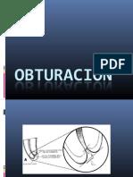 OBTURACIÓN DEL SISTEMA DE CONDUCTOS
