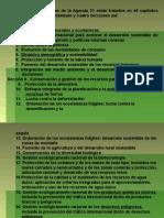 8.- Agenda 21