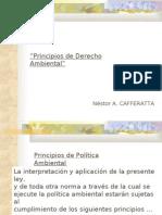 """""""Principios de Derecho Ambiental"""""""