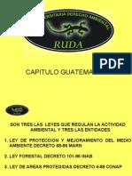 Sancion ambiental RUDA