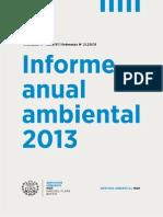 554 - Informe Final 2013 Al 4 Junio Final