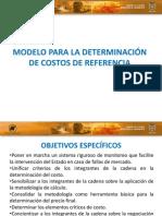 Modelo Para La Determinacion de Costos de Referencia (1)