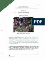 Propuesta Paisajistica Bogotá