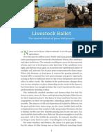 Livestock Ballet