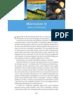 Microsize It