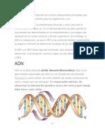 El ADN Y ARN