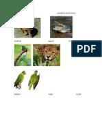 Animales en Peligro De guatemala