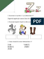 Fisa Litera z