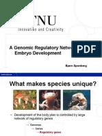 A Genomic Regulatory Network for Embryo Development