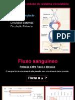 Fluxo Sanguíneo - 2007