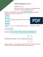 2 TRI - Exercícios Matrizes e Determinantes - Prova de Periodo