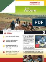 boletin_papa_acocro.pdf