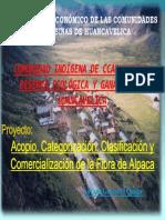 Ccarhuancho